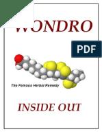 Wondro -- Inside Out