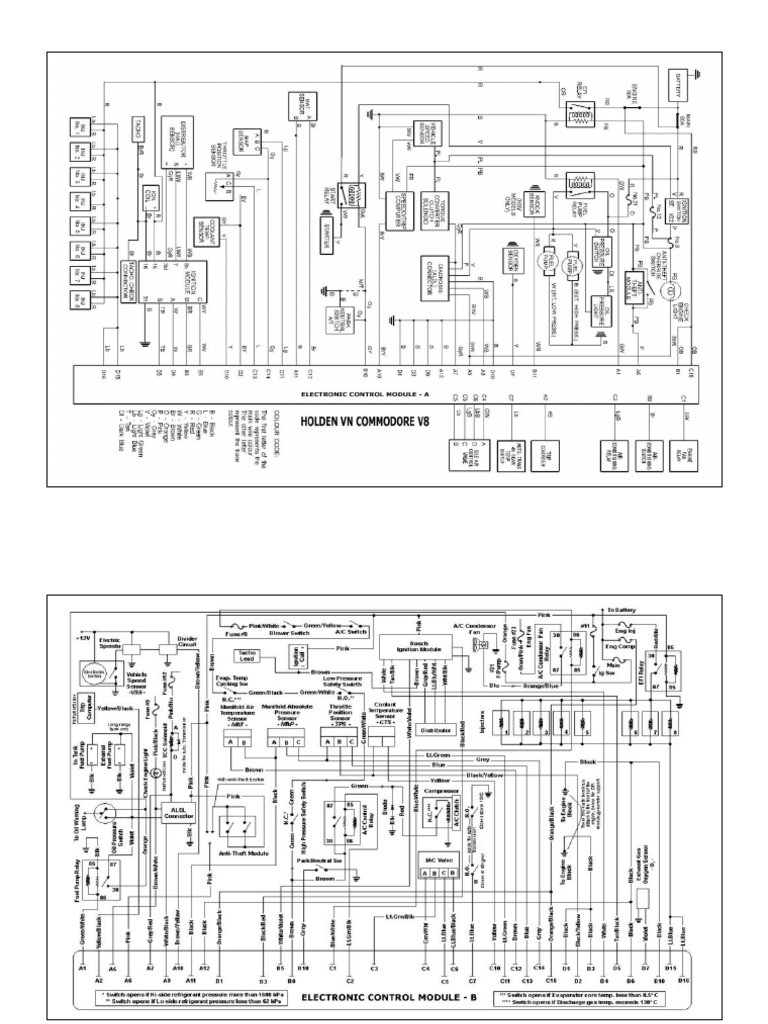 Holden Vn Commodore V8 Electronic Control Module Wiring Diagram Wheeled Vehicles Vehicle Technology