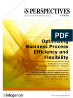 Optimising Business Process Efficiency and Flexibility - Business Perspectives Journal - July 2012