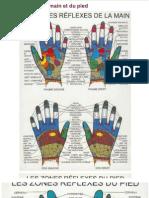 Réflexologie de la main et du pied _ Chenmen