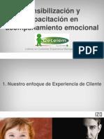Cetelem_Acompañamiento emocional y Recobros_VF