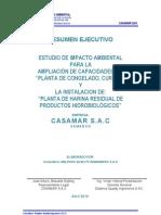 Eia Resumen Ejecutivo 2010 CASAMAR - DELPHOS QUALITY