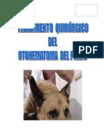 otohematoma1 (Autoguardado)