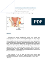 abses glutealis
