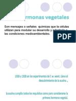 Las Hormonas Vegetales