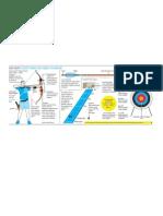 Archery Fundamentals Pdf