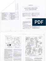 Anatomia Aplicada Ramos Vertiz