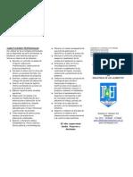triptico oferta educativa ipet 139