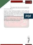Business Plan Report