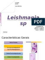 Leishmania sp. - Leishmaniose