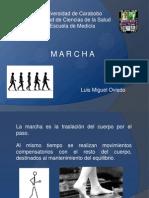 Semiologia Marcha