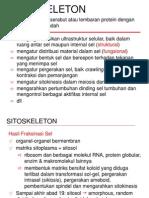 kuliah_BiologiSel_Sitoskeleton1