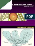 Materi 4 Monera Protista Fungi