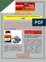 Importancia de las Terapias No Fármaco en las Demencias