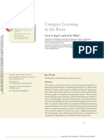 Category Learning in the Brain