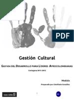 Modulo VIII- Gestión Cultural - 2012