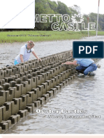 Palmetto Castle-- Summer 2012