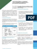 MINEDUC_Liniamientos_graduados_2011