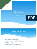 Fotosíntesis presentación