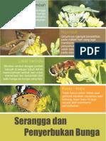 Prototype Poster Proposal Taman Bunga