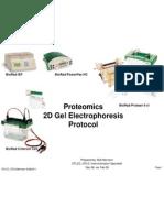 Proteomics 2DGel Electrophoresis