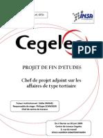 GE5S_2009_SAINT-JOURS_mémoire_PFE