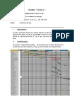 INFORME TÉCNICO N 1 - MONTE FRIO (260612)