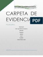 Carpeta de Evidencia Pasteleria