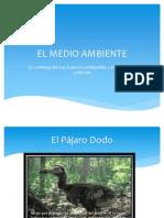 El Medio Ambiente Powerpoint