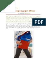 Strategien gegen Stress (Spitzenleistung)   BeYourBest - mehr Erfolg im Leben