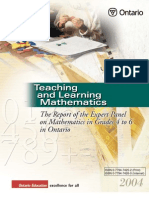 Teaching Mathematics Expert Panel 4 to 6