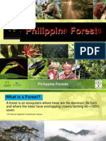 5 Philippine Forests