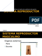 Reproduct Or