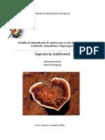 Remoción de cafeína por medio de pleurotus, ganoderma e hipsizigus