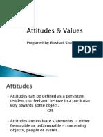 Attitude Lie