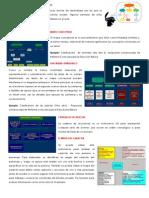 31751035 Tipos de Organizadores Graficos Imprimir