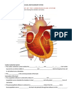 Scorebuilders Cardiac Review