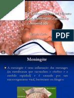 Assistência de Enfermagem ao cliente acometido por Meningite(1)