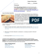 Bio 205 Ch4 Study Guide Phoenix College