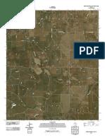 Topographic Map of Throckmorton NE