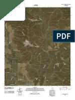 Topographic Map of Jayton North
