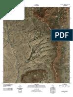 Topographic Map of Paso Del Norte