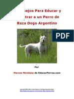 4 Consejos Para Educar y Adiestrar a Un Perro de Raza Dogo Argentino