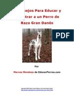 4 Consejos Para Educar y Adiestrar a un Perro de Raza Gran Danés