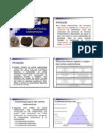 Tipos de Rochas Sedimentares
