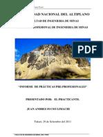 Informe de Practicas Pre- Profesionales Juansucso