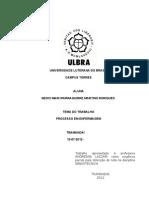 Universidade Luterana Do Brasiltabalho Processo de Enfermagem