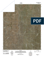 Topographic Map of Borger SE