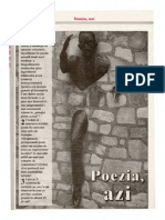 dosar poezie 2008
