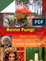 Serguei - Fungos
